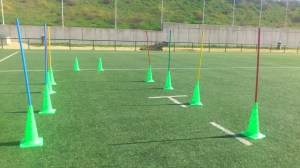 trainingexercise